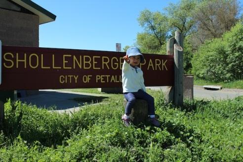 Shollenberger Park entrance